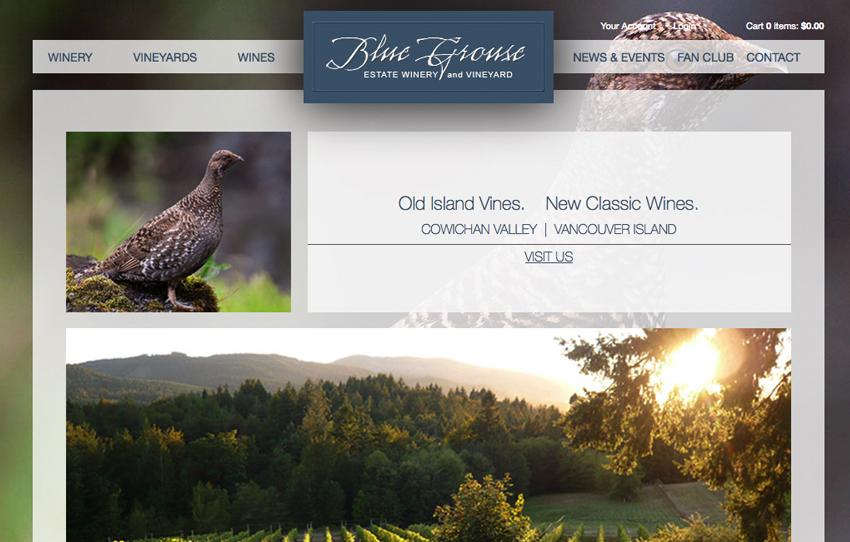 cowichan valley website designer