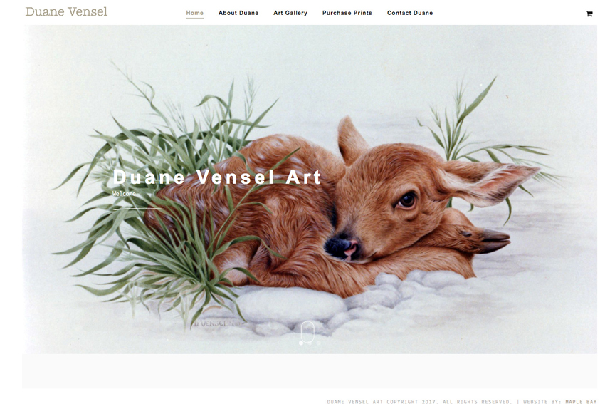 Artist Gallery ECommerce Web Site Designer Vancouver Island