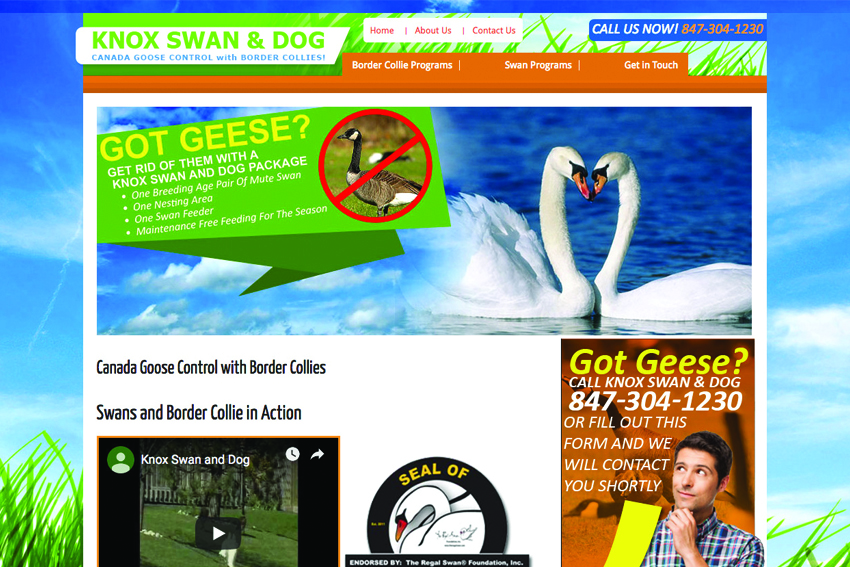 Animal Control Website Design Services Vancouver Island